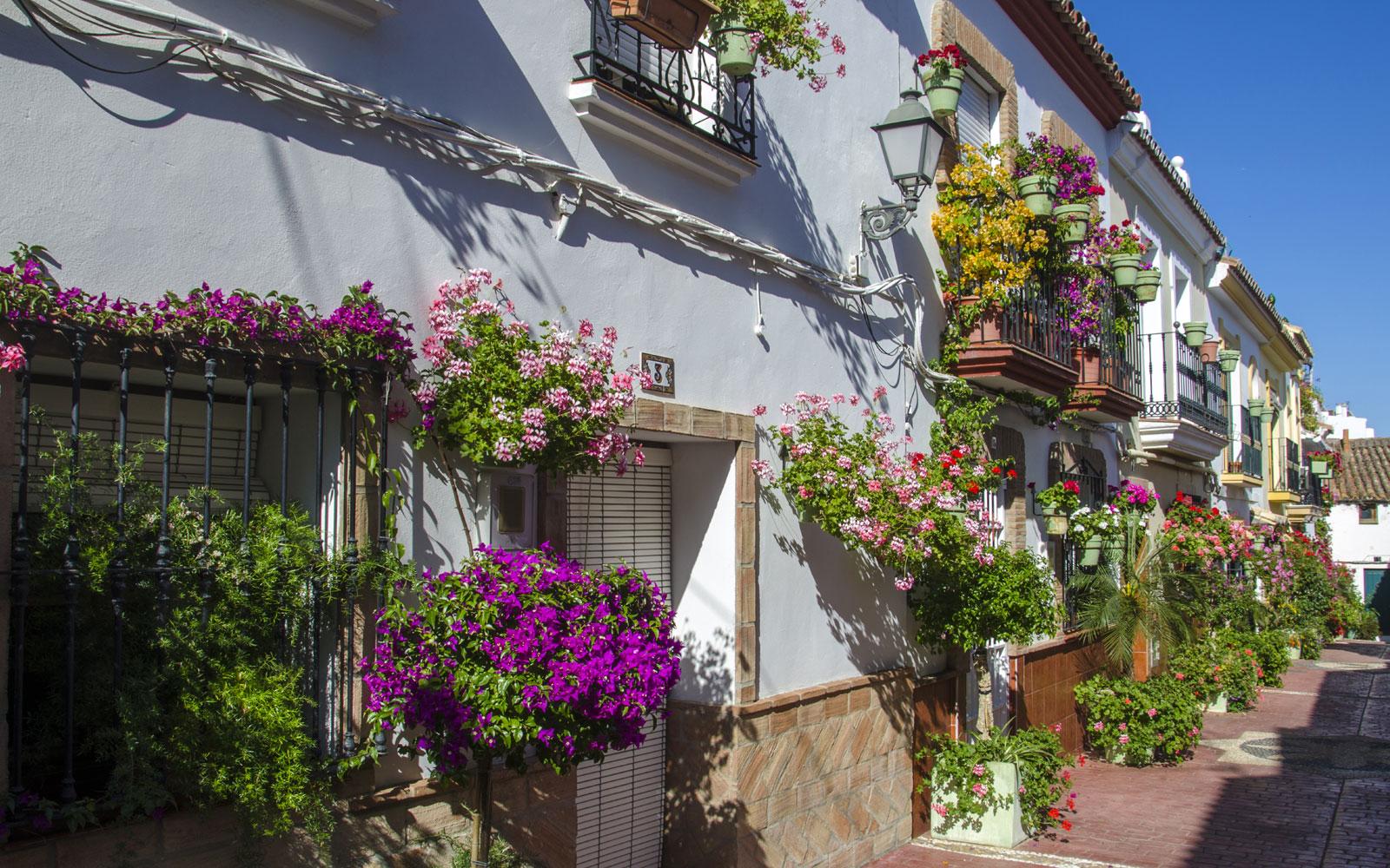 Apartamentos Miguel Ángel